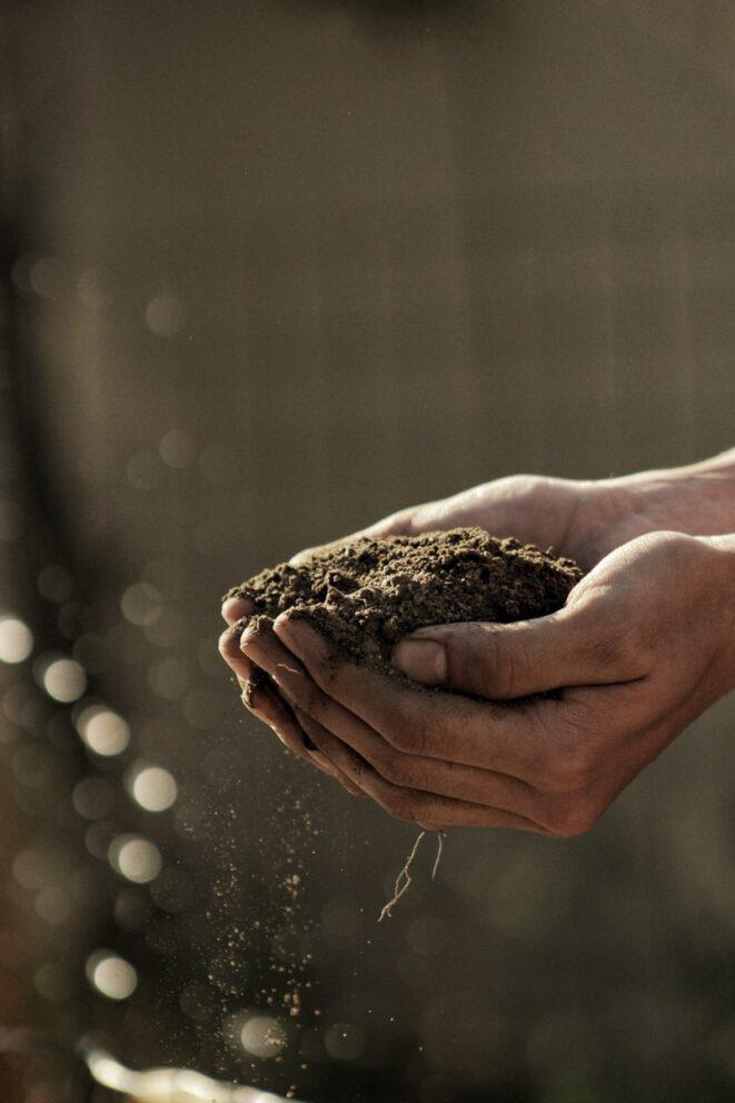 žena drží půdu v rukou